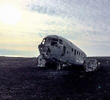 Plane Wreckage by Carol Bock