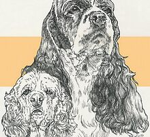 American Cocker Spaniel, Father & Son by BarbBarcikKeith