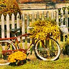 Bike - Zoar, OH - The ride is never over by Mike  Savad