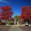 SQUARE IN FALL by jclegge