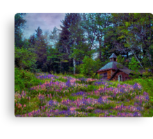 A Riot of Lupine Outside the Cabin  Canvas Print