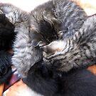 group sleepover by LoreLeft27