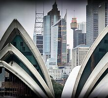 Sydney Architecture by Clare Colins