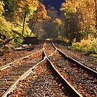 Tracks Join And Vanish Into Fall by Geno Rugh