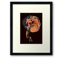 Brain Framed Print