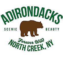 Awesome Adirondacks North Creek New York Forever Wild Bear Nature Photographic Print
