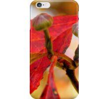Fall Walk in my Neighborhood -CloseUp     ^ iPhone Case/Skin