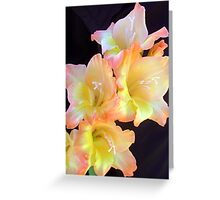 Full of delicate beauty Greeting Card