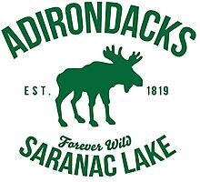 Cool Adirondacks Saranac Lake New York Scenic Beauty Moose Nature T-Shirt Photographic Print