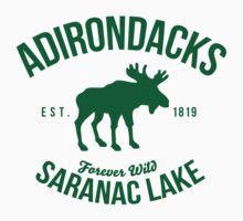 Cool Adirondacks Saranac Lake New York Scenic Beauty Moose Nature T-Shirt by Albany Retro