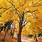 Under the Yellow Tree by Lisa Cook