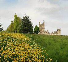 Wildflower meadows lead to Downton abbey by miradorpictures