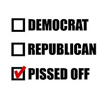 Pissed Off Voter by TheBestStore