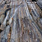 On the Rocks by PhotosByHealy