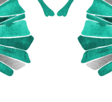Seahorse – Turquoise & Silver Sticker