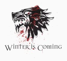 Winter Is Coming Says the House of Stark by RootsofTruth