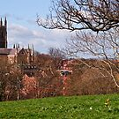 Worcester Cathedral from Fort Royal Hill by Lissywitch