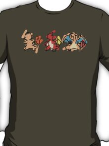 Charmander Evoloution T-Shirt