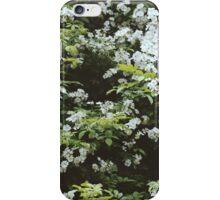 Cape Breton // Wildflowers iPhone Case/Skin