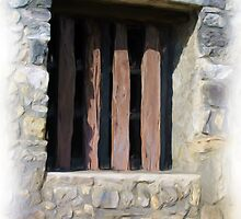 Alamo Window by shutterbug941