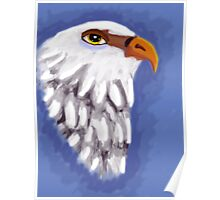 beautiful eagle on blue background Poster
