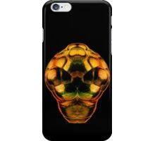 Take me to your Leader iPhone Case/Skin