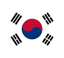 Living Korea Flag Photographic Print