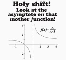 Hilarious 'Holy Shift! Look at the asymptote on that mother function' Math Geek T-Shirt by Albany Retro