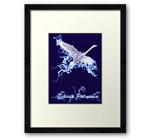 Harry Potter: Cho Chang's Patronus Framed Print