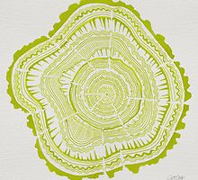 Chartreuse Tree Rings by Cat Coquillette