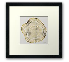 Gold Tree Rings Framed Print