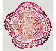 Tree Rings – Red Watercolor Photographic Print