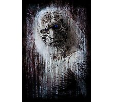 White Walker Photographic Print