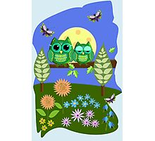 Cute Owls in Fantasy Summer Land Photographic Print