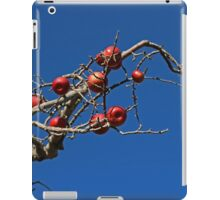 Red Apples Hanging On iPad Case/Skin