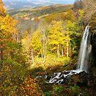Falling Spring Falls II by Karen Peron
