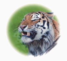 Tiger by Thomas F. Gehrke