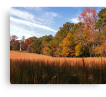 A Peaceful Fall Day in Georgia... products Canvas Print