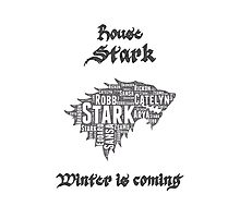 House Stark, Game of Thrones Photographic Print
