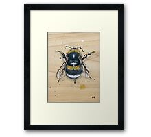 Bee #2 Framed Print