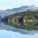 Reflections from Akaroa by Lissie E J