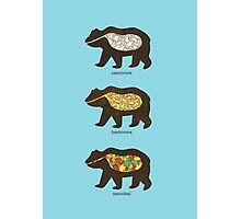 The Eating Habits of Bears Photographic Print