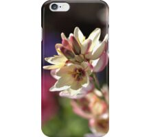 Ixia   iPhone Case/Skin