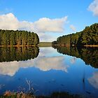 A Reservoir of Reflection by Colin Binks