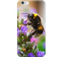 Humble Bumblebee iPhone Case/Skin