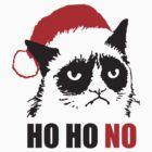 Grumpy Anti Christmas Cat : HO HO NO! by nektarinchen