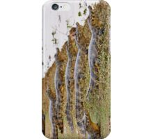 group of yacare caimans iPhone Case/Skin