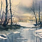 Meltwater - Skipwith Common by Glenn Marshall