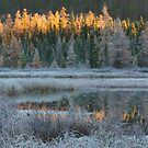 Early Fall, Algonquin Park, Canada by Jim Cumming