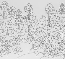 Line Drawing of the Lupin Flower by Stephen Borges